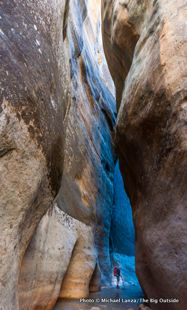 A backpacker in the upper section of Zion's Narrows.