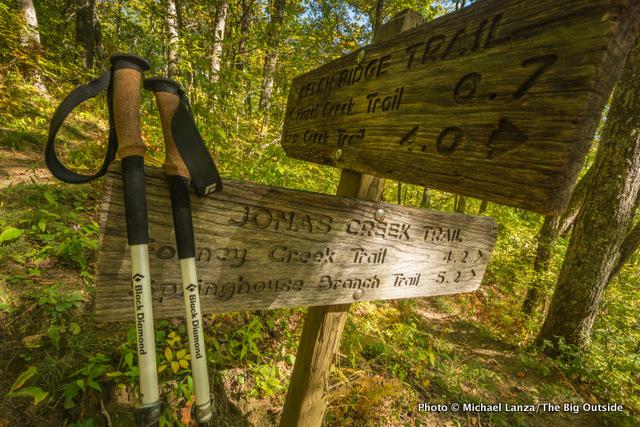 Black Diamond Alpine Carbon Cork Trekking Poles.