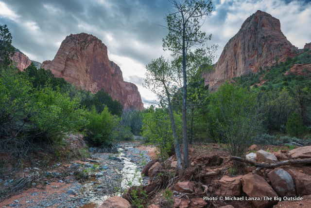 Taylor Creek Trail, Kolob Canyons, Zion National Park.