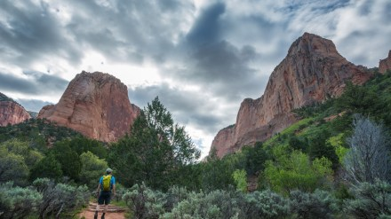 Photo Gallery: Hiking the Kolob Canyons of Zion National Park