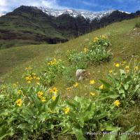 Along the High Trail, Hells Canyon, Oregon.