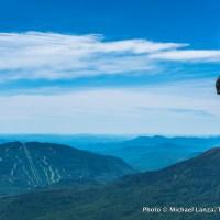Mark Fenton on the Osgood Ridge Trail, Presidential Range, N.H.