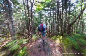 Hiking Wildcat Ridge Trail.