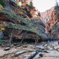 The Subway, Zion National Park.