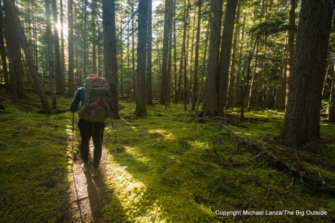 A backpacker hiking the Thunder Creek Trail in North Cascades National Park.