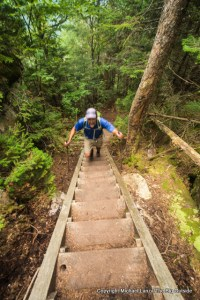 Mark Fenton hiking the steps on the Osseo Trail, White Mountains, N.H.