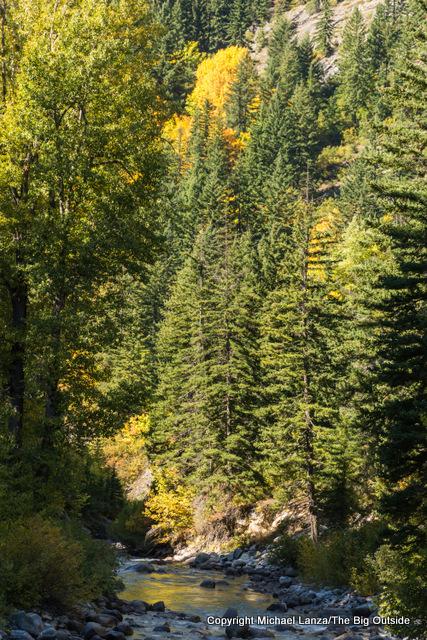 Bridge Creek, North Cascades N.P.