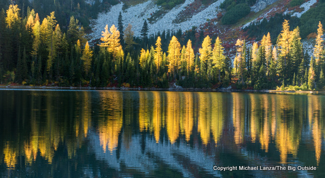 Larch trees at Rainbow Lake, on an 80-mile hike in the North Cascades National Park Complex.