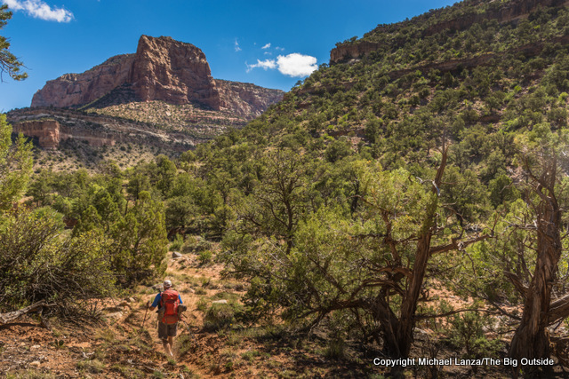 David Gordon backpacking up southeastern Utah's Dark Canyon.