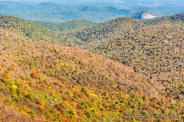 View from the Art Loeb Trail, Pisgah National Forest.