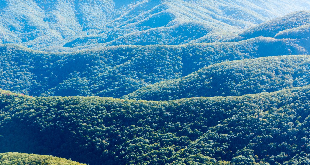 Photo Gallery: Exploring North Carolina's Blue Ridge Mountains