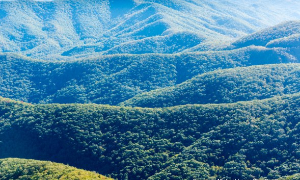 Photo Gallery: Exploring North Carolina's Blue Ridge Mountains