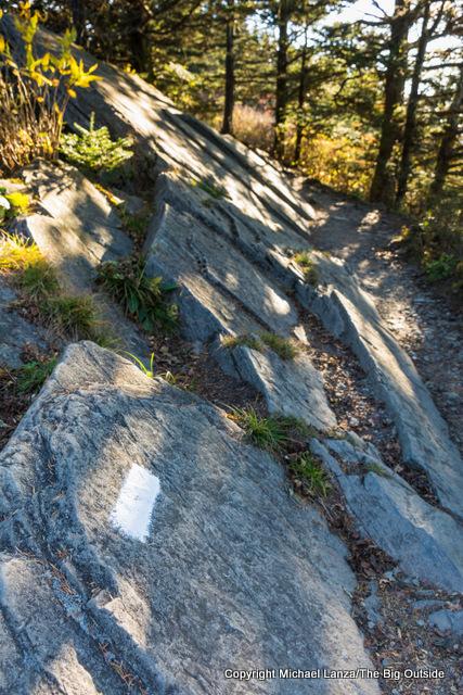 Appalachian Trail, Great Smoky Mountains National Park, N.C.