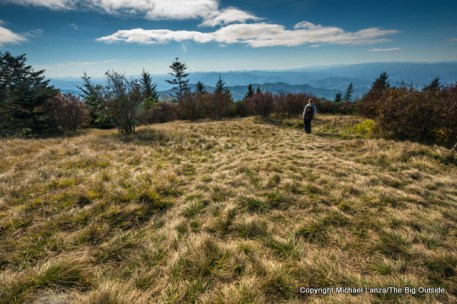 Andrews Bald, Great Smoky Mountains National Park, N.C.