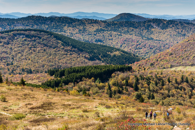 Art Loeb Trail, Black Balsam Knob, Pisgah National Forest.