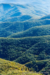 View from Devils Courthouse, Pisgah National Forest, N.C.