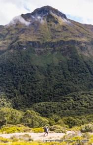 Hiking the Kepler Track to Iris Burn, Fiordland National Park.