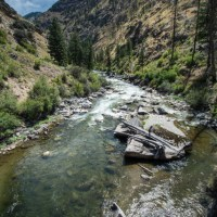Big Creek tributary of the Middle Fork Salmon River, Idaho.