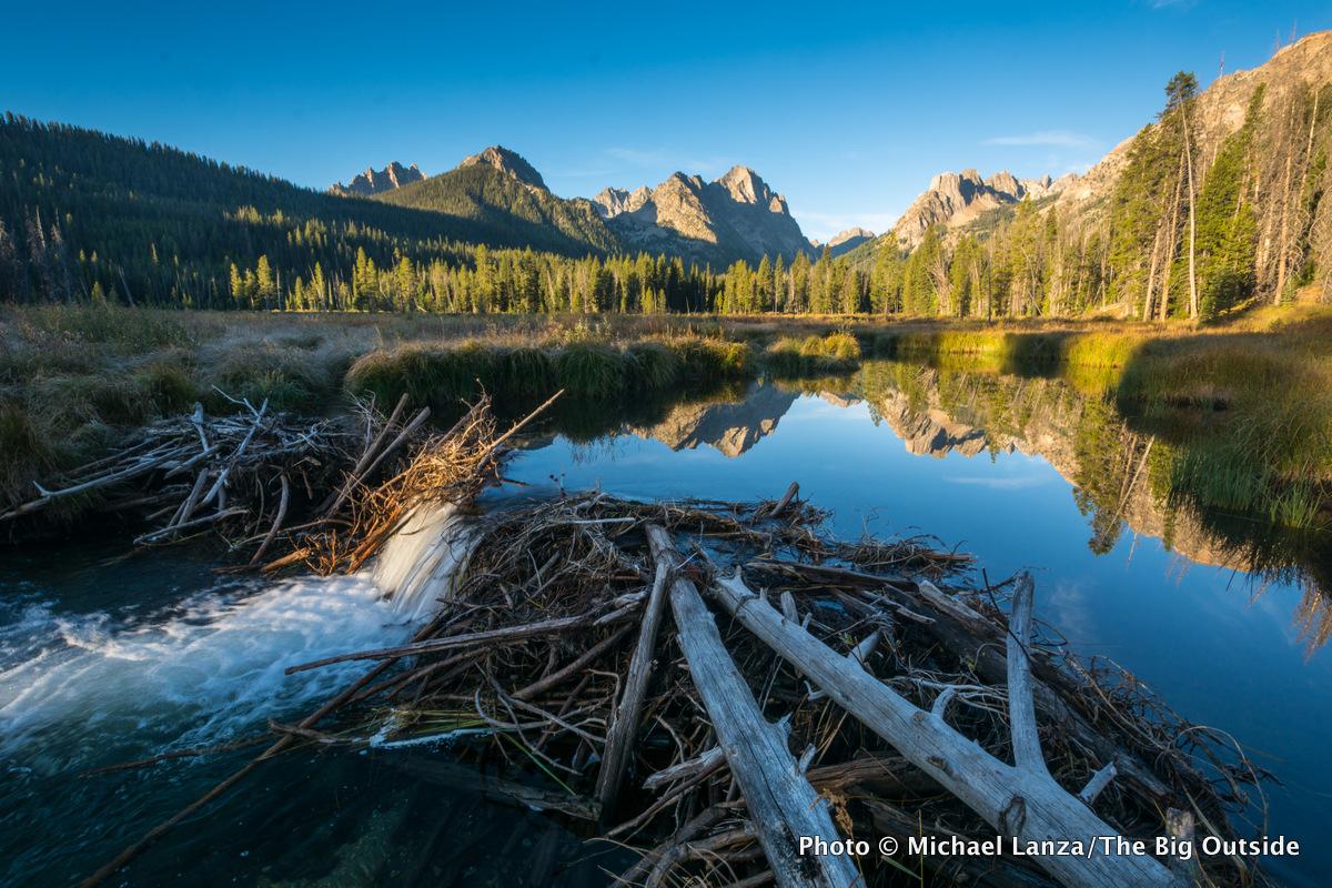 Fishhook Creek, Sawtooth Mountains, Idaho.