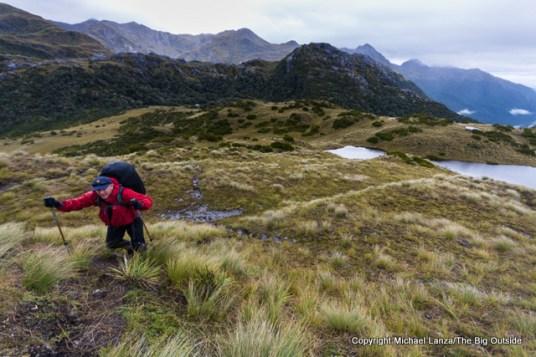 Above Lake Roe Hut on the Dusky Track, Fiordland National Park, New Zealand.
