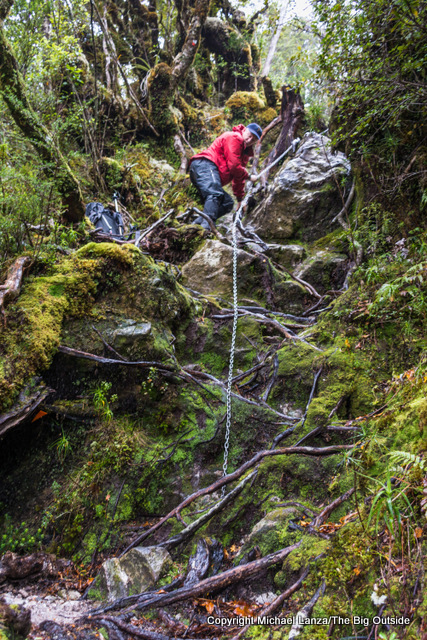 A trekker descending a steep section of the Dusky Track toward Loch Maree in New Zealand's Fiordland National Park.