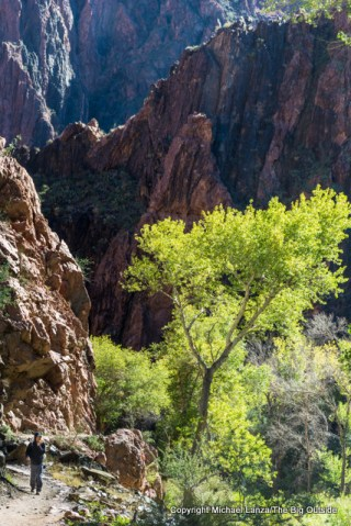 A hiker on the North Kaibab Trail in the Grand Canyon.