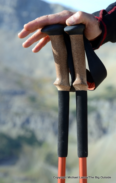 Black Diamond Trail Ergo Cork poles grips.