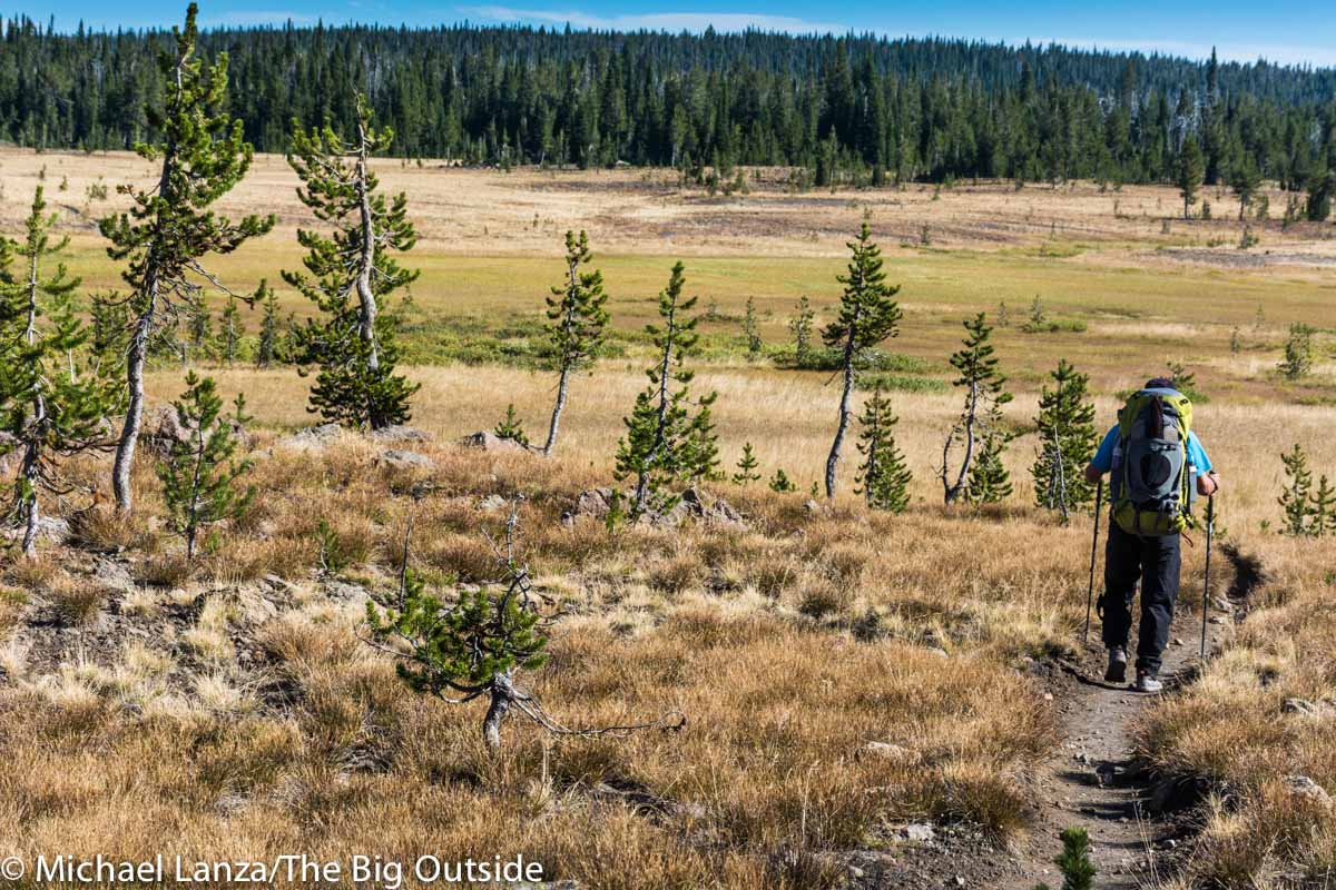 A backpacker hiking the Bechler River Trail, Yellowstone National Park.