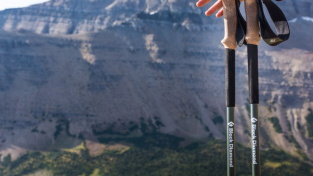 Review: Black Diamond Alpine Carbon Cork Trekking Poles