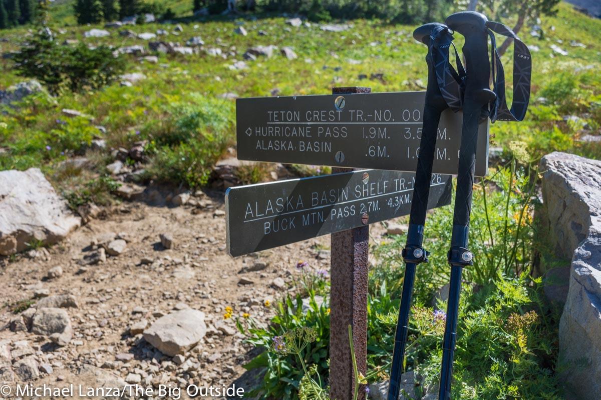 Leki Micro Vario Carbon Black Series trekking poles.