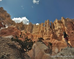 The 12 Best Hikes in Utah's National Parks
