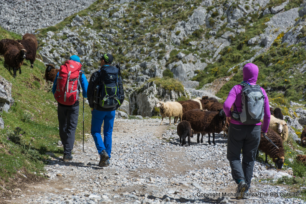 Hikers in Picos de Europa National Park, Spain.