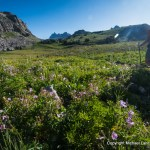 12 Expert Tips for Planning a Wilderness Backpacking Trip