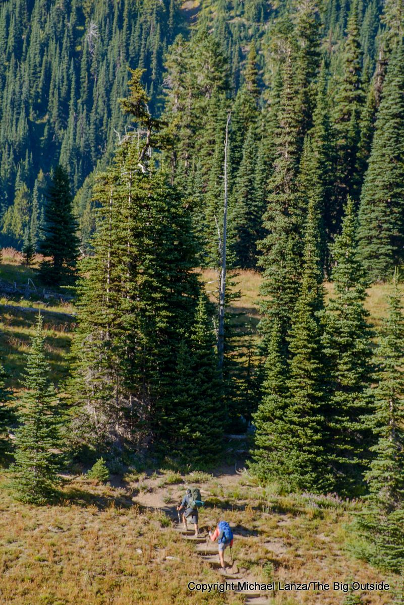 Backpackers on the Wonderland Trail at Summerland, Mount Rainier National Park.