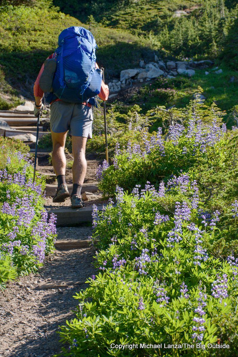 A backpacker on the Spray Park Trail, Mount Rainier National Park.