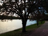 The beautiful Boathouse Row path