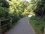 More of the Wissahickon