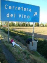 Carretera del Vino