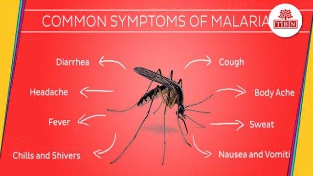 thebiharnews-in-Home-remedies-for-Malaria-symtoms