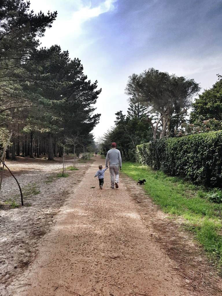 father and son walking in forest holding hands