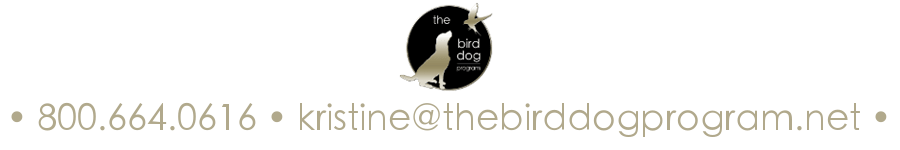 Contact The Bird Dog Program Real Estate Investing and Short Sale Program