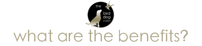 What are The Benefits of The Bird Dog Program?