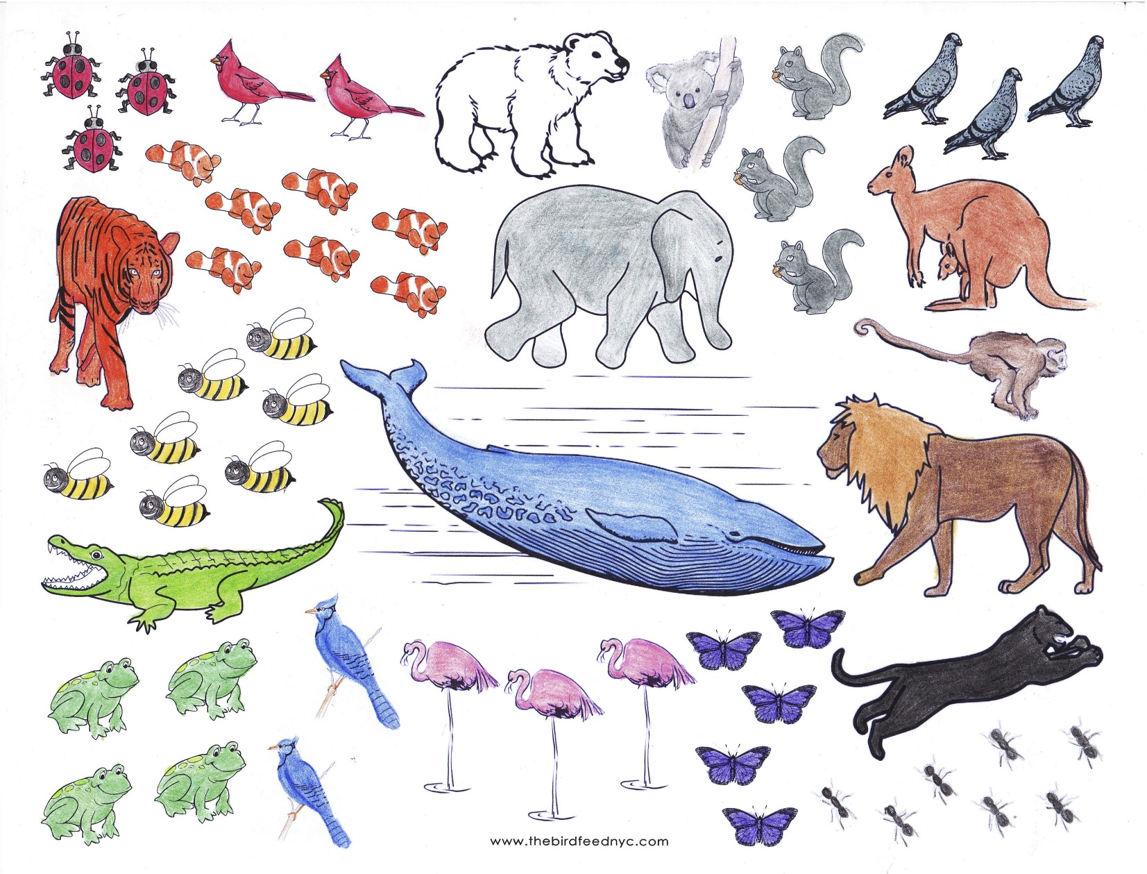 Animals Coloring And Counting Activity Sheet