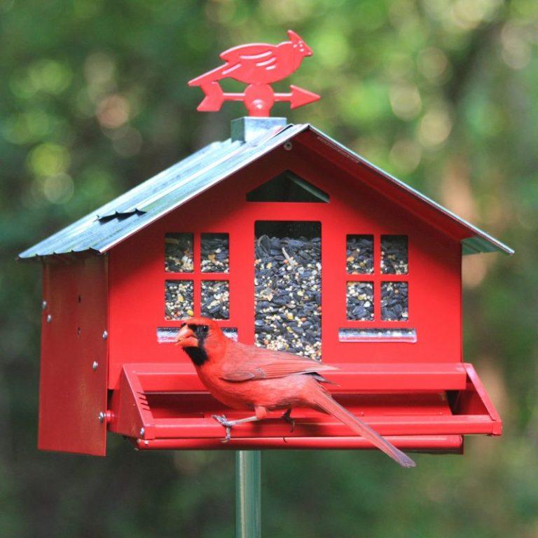 Perky-Pet 338 Squirrel Be Gone II Bird Feeder