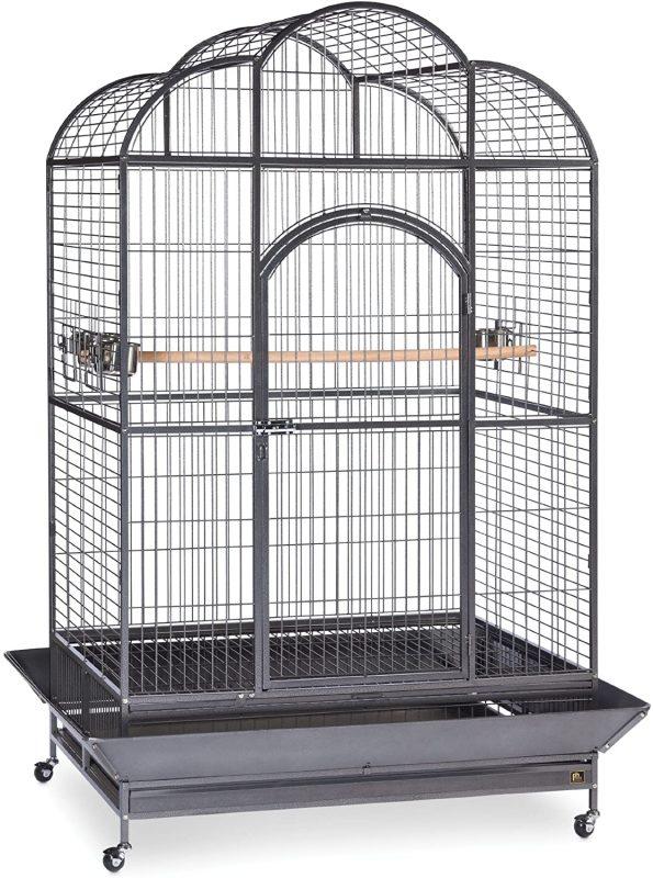 best parrot cages