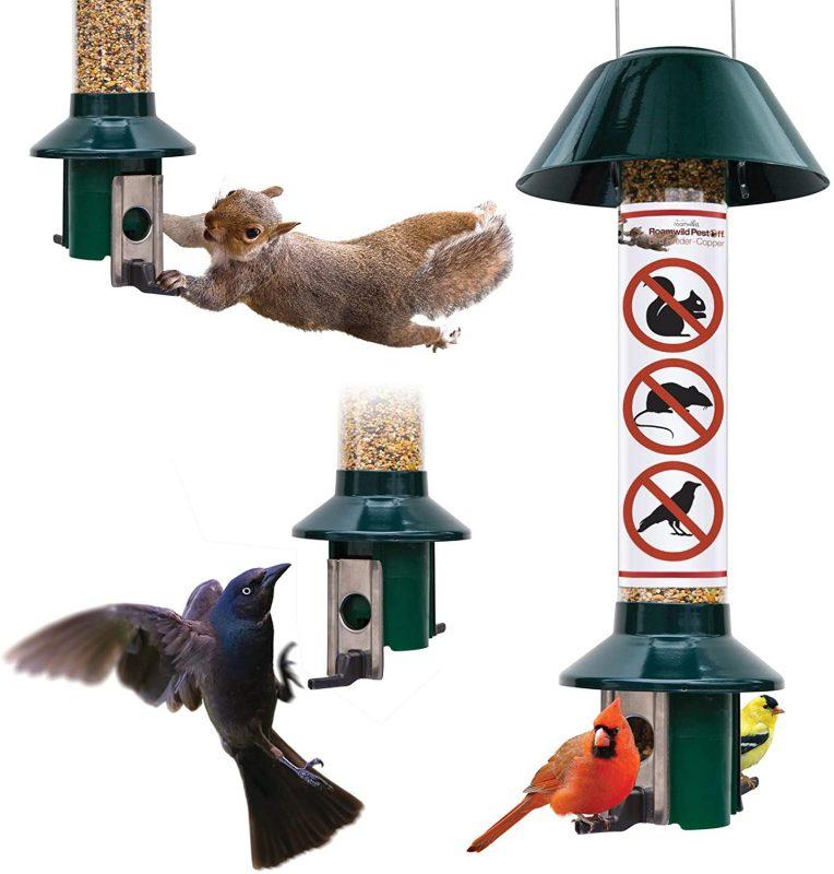 Roamwild Squirrel Proof Cardinal Bird Feeder