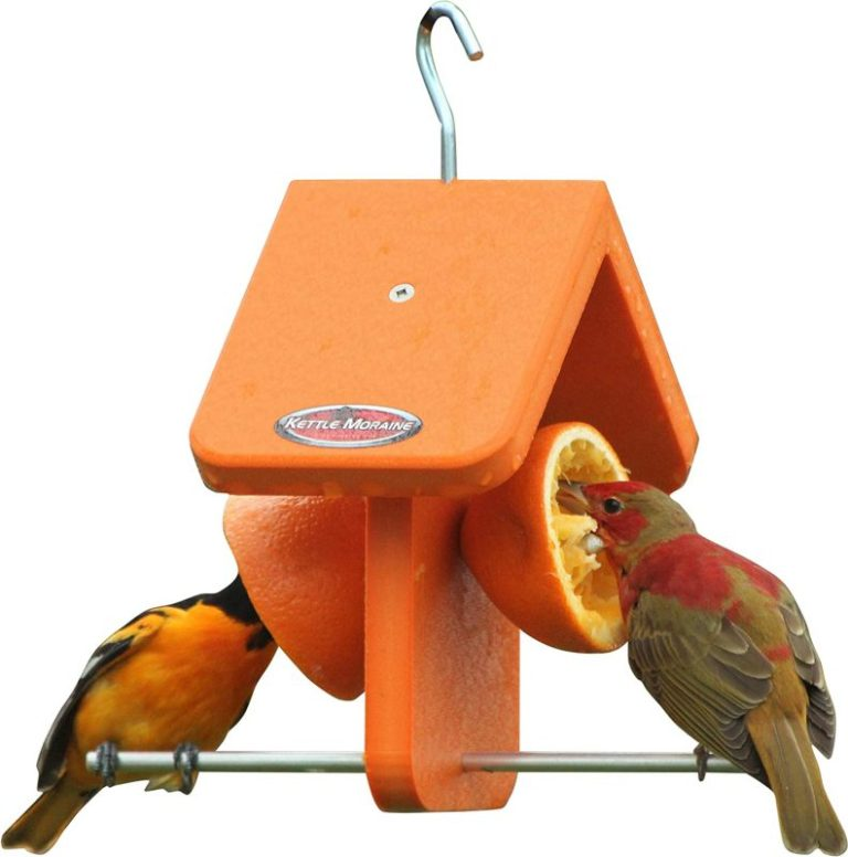 Kettle Moraine Recycled Single Oriole Feeder