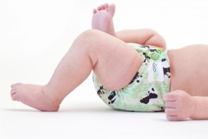 the birth center cloth diaper