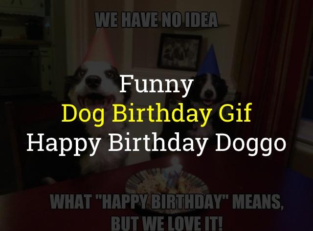 Dog Birthday Gif