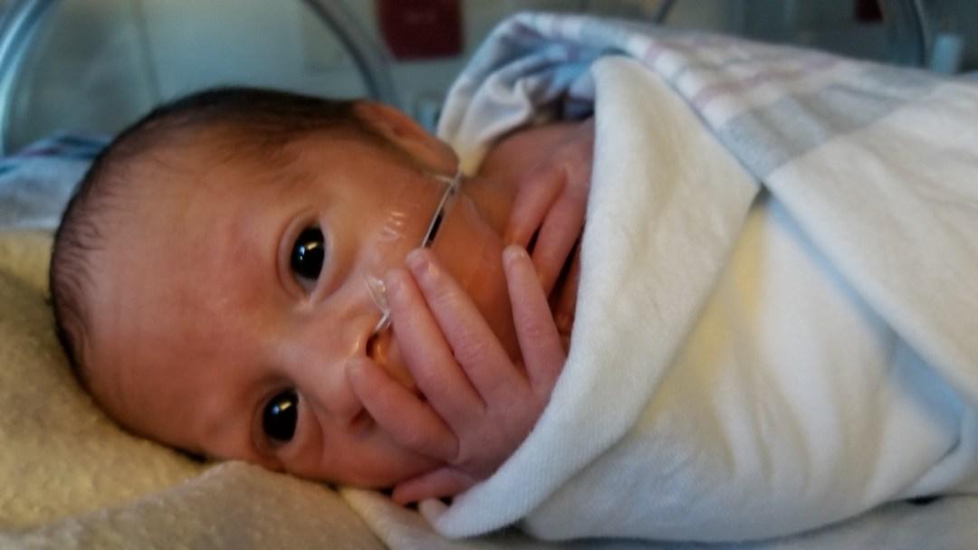 Infertility, Loss & Preeclampsia Preterm Labor